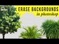 Erase Background from Images in Photoshop Tutorial
