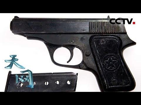 《天网》枪响之后�年天鹅广场持枪抢劫案侦破纪实   CCTV社会与法
