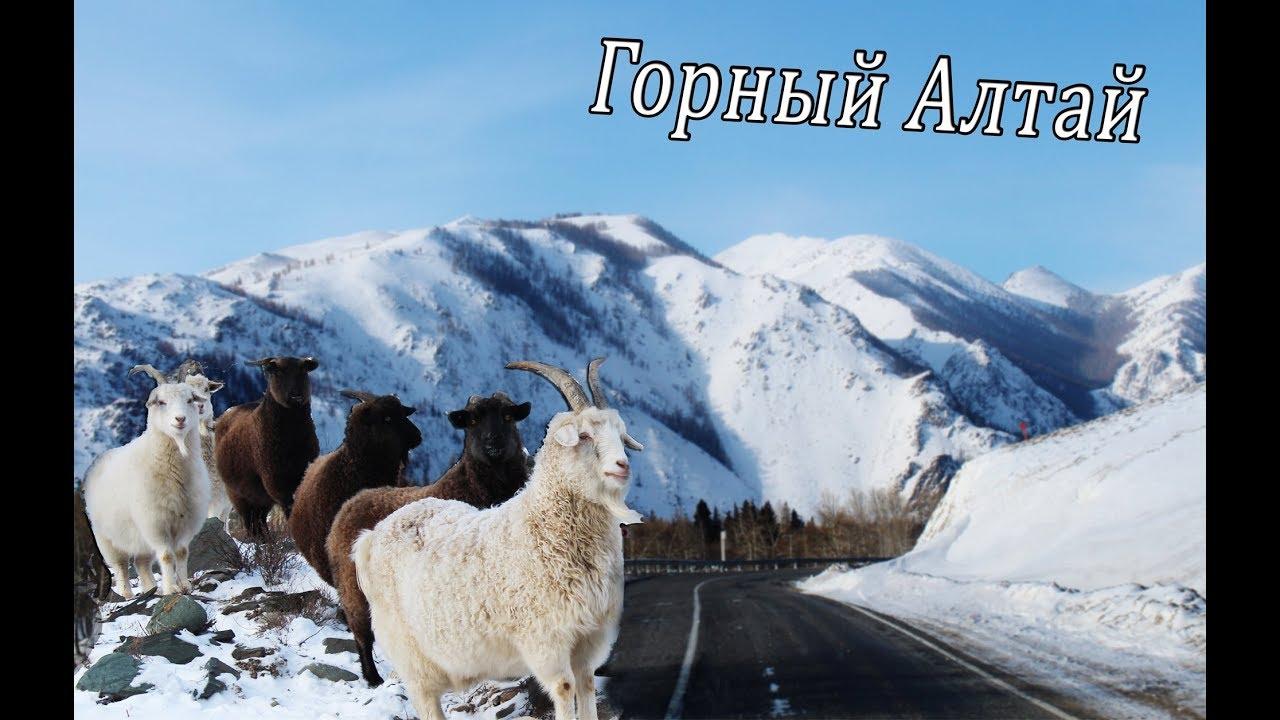 Горный Алтай зима 2018.Кош-Агач.Mountain Altai winter 2018.Kosh-Agach