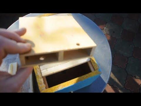 простой способ пчеловождения, пасека, мед, деревенская пасека, как водить пчел, как заниматьс,