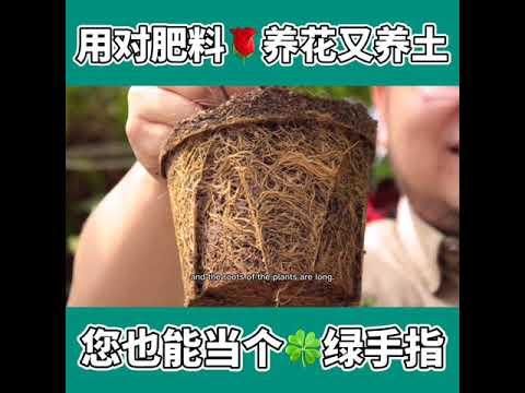 BABA种植小学堂:用对肥料,养花又养土!Tips to fertilizing flowering plants