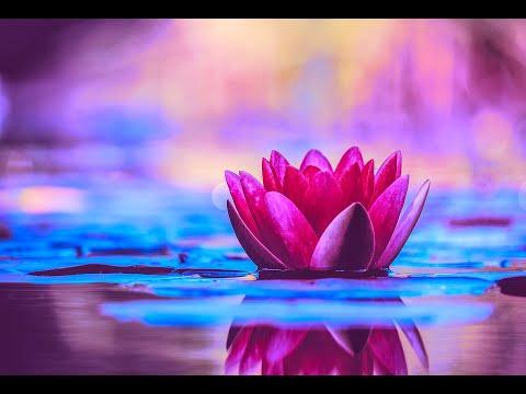 Miracle Music Healing 528Hz | Enhance Self Love | Positive Energy Cleanse | Meditative Music Healing