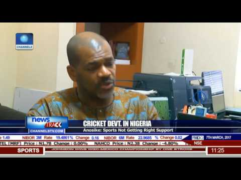 Cricket Devt In Nigeria: Sports Not Getting Right Support-- Anosike