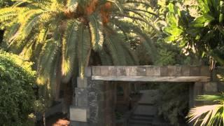 Día 2 Blogtrip Iberojet: Tenerife mucho más que sol y playa - Ruta Volcánica