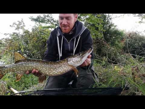 Paternoster Rig Beneath The Surface  Pike And Perch