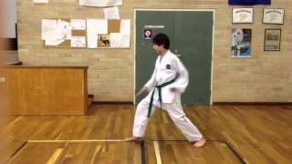 10th Grade - White Belt - 4 Direction block (Saju Makgi) -