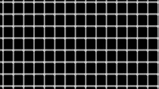 Ilusion Optica de la Cuadrícula Centelleante