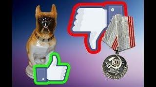 Медаль или Собака, что дороже?