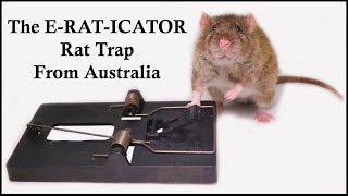 the-e-rat-icator-rat-trap-from-australia-mousetrap-monday