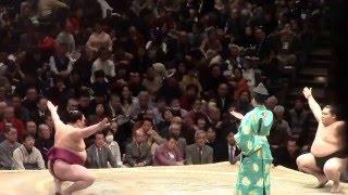 2016.1.16 東京 両国国技館 http://www.sumo.or.jp/ 東前頭十二枚目 千...