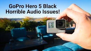 GoPro Hero 5 + Karma Grip Sound Issues