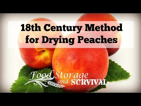 18th Century Method for Drying Peaches