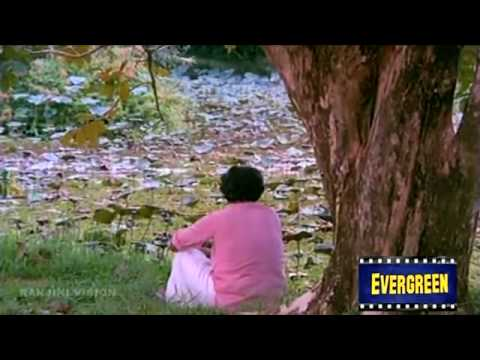 Anuragini Itha En Karalil Virinja Pookkal  - Oru Kudakkeezhil (1985)