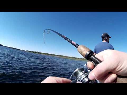 летняя рыбалка на щуку - 2017-09-04 23:12:05