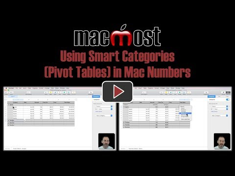 Using Smart Categories (Pivot Tables) In Mac Numbers (#1764)
