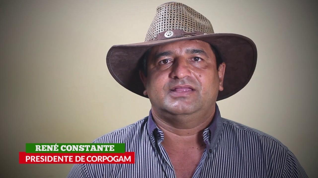 TODO LISTO PARA LA SUBASTA DE GANADO BOVINO ((26-11-2016))