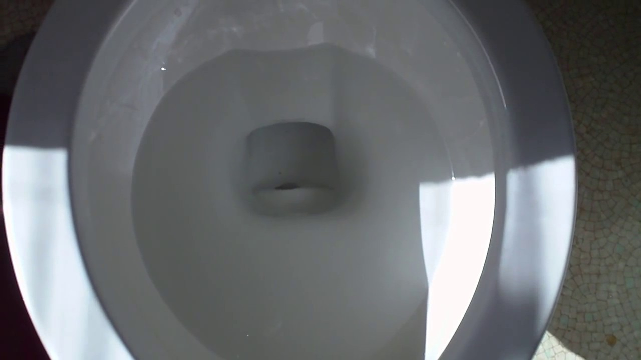 A Possible EASY FIX For Your TOILET THAT DOESNT FLUSH