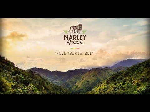 Introducing: Marley Natural Fine Cannabis