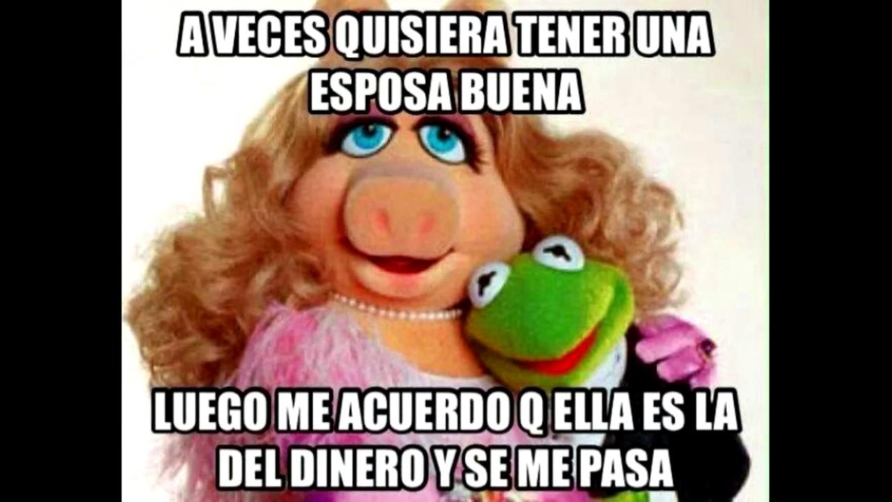 maxresdefault memes de la rana rené youtube