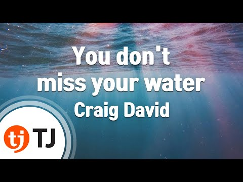 [TJ노래방] You don't miss your water - Craig David  / TJ Karaoke