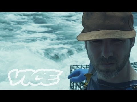 A Piece of the Bottom: VICE Shorts