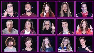 כוכבי פסטיגל 2019 נחשפים!!! | #PLAYפסטיגל