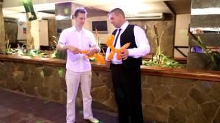 Шар Шоу или Шоу воздушных шаров (твистинг шоу) вар.2