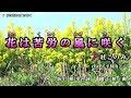 【新曲】花は苦労の風に咲く・杜このみ・ cover 平林 由美子