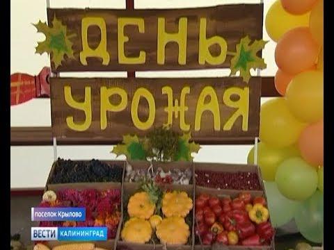 В доме интернате «Маленькая страна» состоялся праздник урожая
