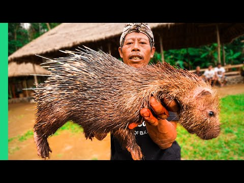 EXTREME BALI!!! RARE Sacred Animal Meal in Bali, Indonesia!!! (Once every ten years) - Видео онлайн