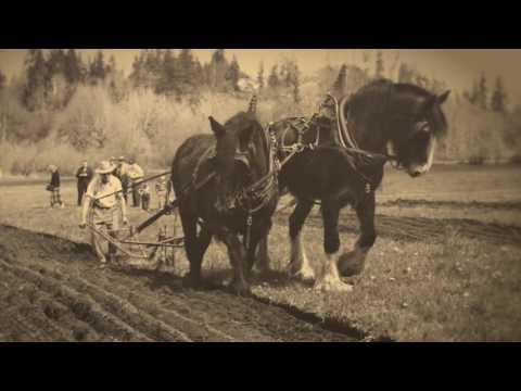 TillersFolly Pioneer Days