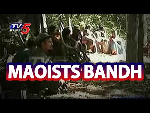 Maoists Bandh Today | Tribal People in Tension | Police Combing in Progress | TV5 News