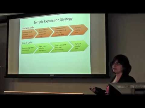 How to Purify Recombinant Proteins by Dr. Prerna Grover