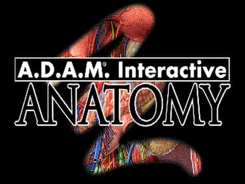 Descarga y Instalacion A.D.A.M Interactive Anatomy - YouTube