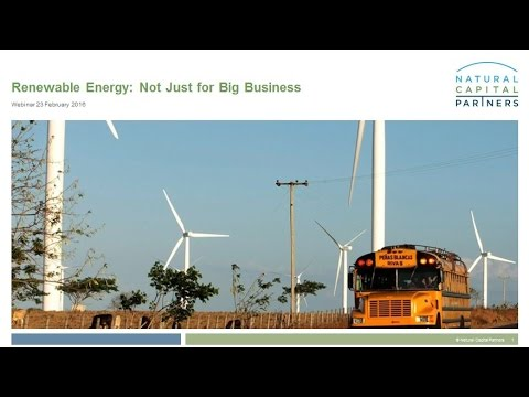 Renewable Energy  Not Just for Big Business