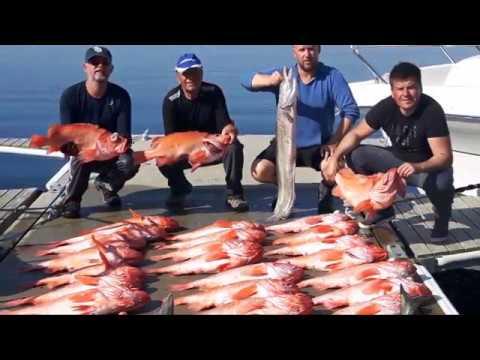 Deep Sea Fishing In Norway