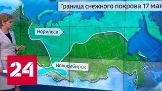 """""""Погода 24"""": рекорды жары в европейской России и снегопады в Западной Сибири - Россия 24"""