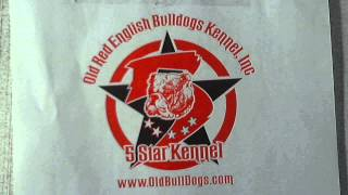 Real Deal Old Red English Bulldogs Kennel Inc.