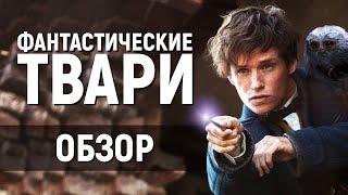 ФАНТАСТИЧЕСКИЕ ТВАРИ - ЛУЧШЕЕ ФЭНТЕЗИ 2016? (обзор фильма)