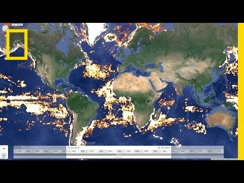 Tracking Illegal Fishing—From Space | National Geographic