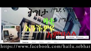 tezeta amharic music free style by hailu sebhat ትዝታ