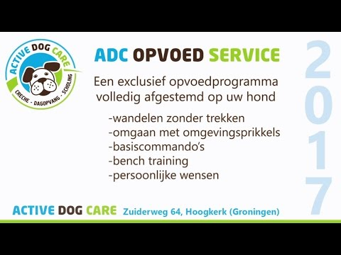 Opvoedservice Active Dog Care