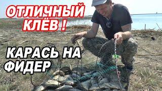 КРУПНЫЙ КАРАСЬ на ФИДЕР Рыбалка С НОЧЕВКОЙ в палатке на БЕРЕГУ ОЗЕРА 2021