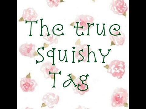 THE TRUE SQUISHY TAG (created By Me!) - YouTube