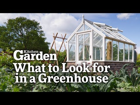 What to Look for in a Greenhouse   Kitchen Garden Magazine  
