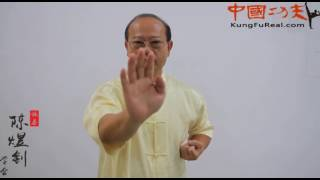 wing chun course online----wing chun  form  tutorial