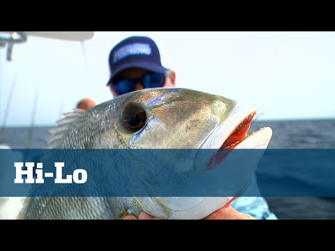 Hi-Lo Rig For Fishing Reefs/Wrecks - Florida Sport Fishing TV