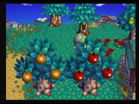Animal Crossing City Folk - Catching a Giant Beetle