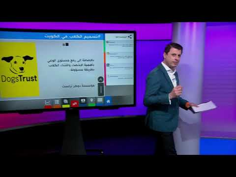 بعد فيديوهات تسميم الكلاب، مقطع مصور لكلب ملفوف بعلم الكويت يثير غضب الكويتيين.  - نشر قبل 13 دقيقة