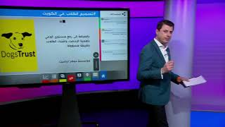 بعد فيديوهات تسميم الكلاب، مقطع مصور لكلب ملفوف بعلم الكويت يثير غضب الكويتيين.